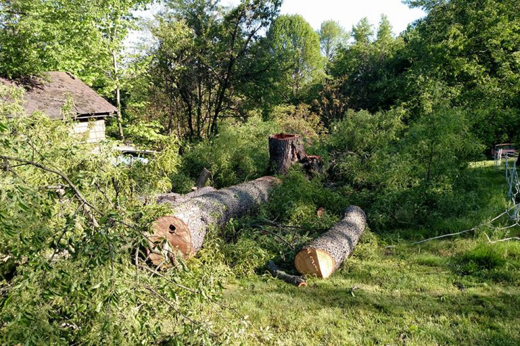 land clearing zanesville oh